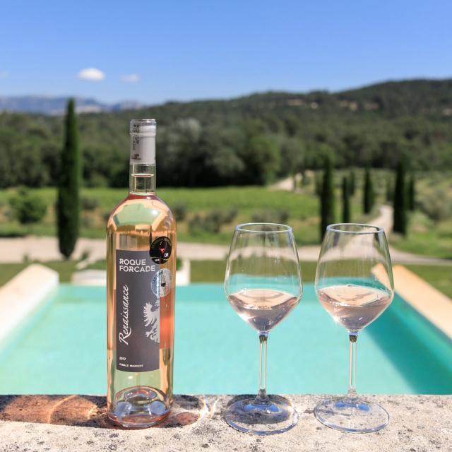 verres-bouteille-vin-rose-domaine-roque-forcade-artais-studio-oti-aubagne-scaled.jpg