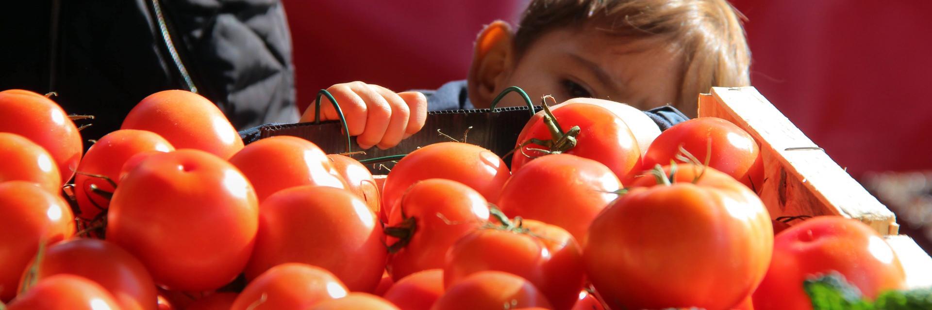Marché à Aubagne - Provence étal tomates - OTI_Aubagne