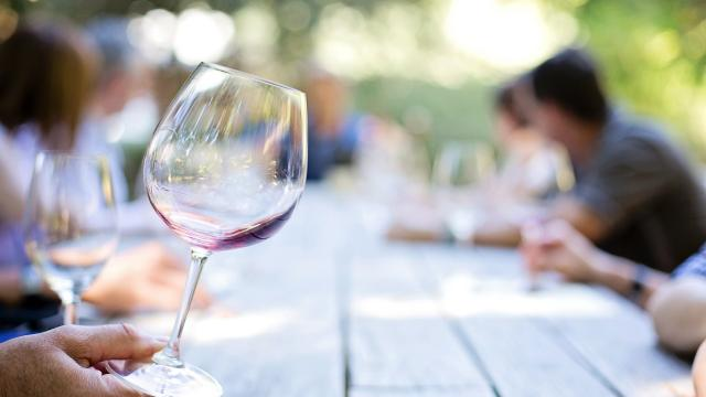 Dégustation Vin Rouge Blanc Bourgogne