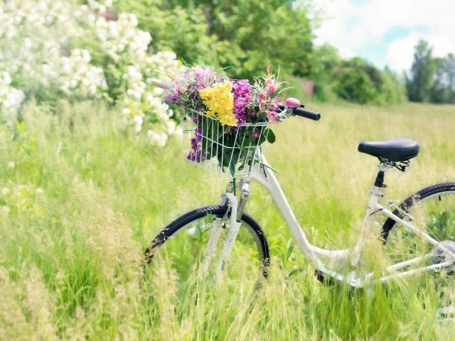 Vélo Printemps