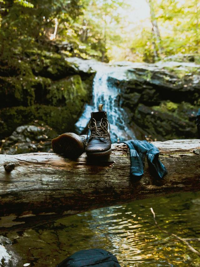Randonnée en forêt