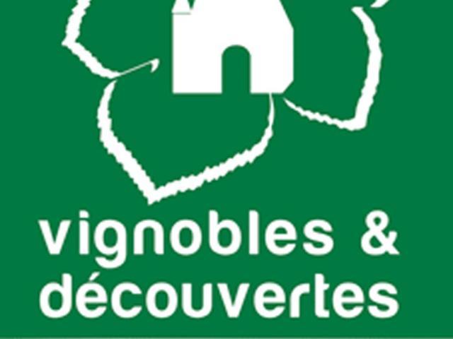 Vignoblesdecouvertes4aoutbi