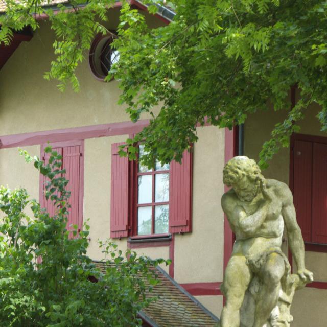 Parc Arbre Sec Ot Auxerre