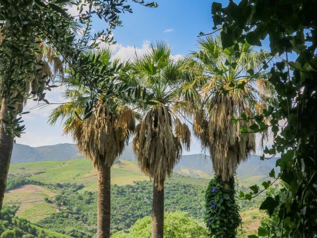 Biodiversarium Jardin Biodiv Jolies Lueurs 1 (2)