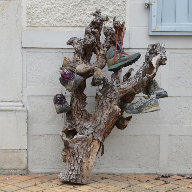 Chaussures Pelerins Navarrenx