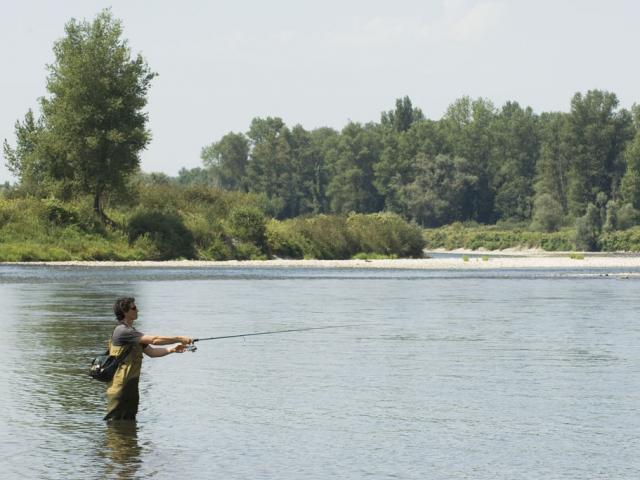 Pêcheur sur le gave de Pau