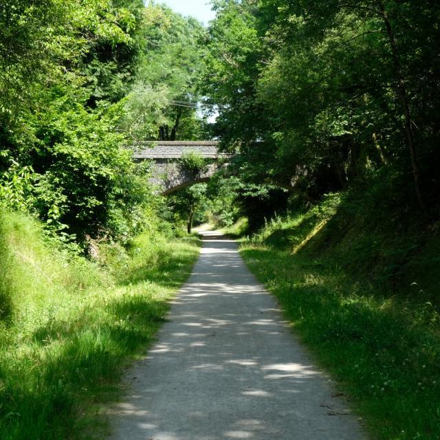 L'allée verte de Salies-de-Béarn