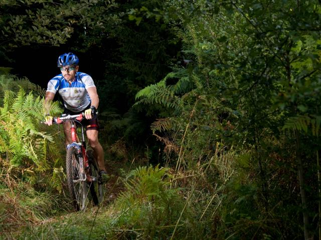 Vtt Sportif Vers Le Lac Genin©marc Chatelain Aintourisme Fin 300916