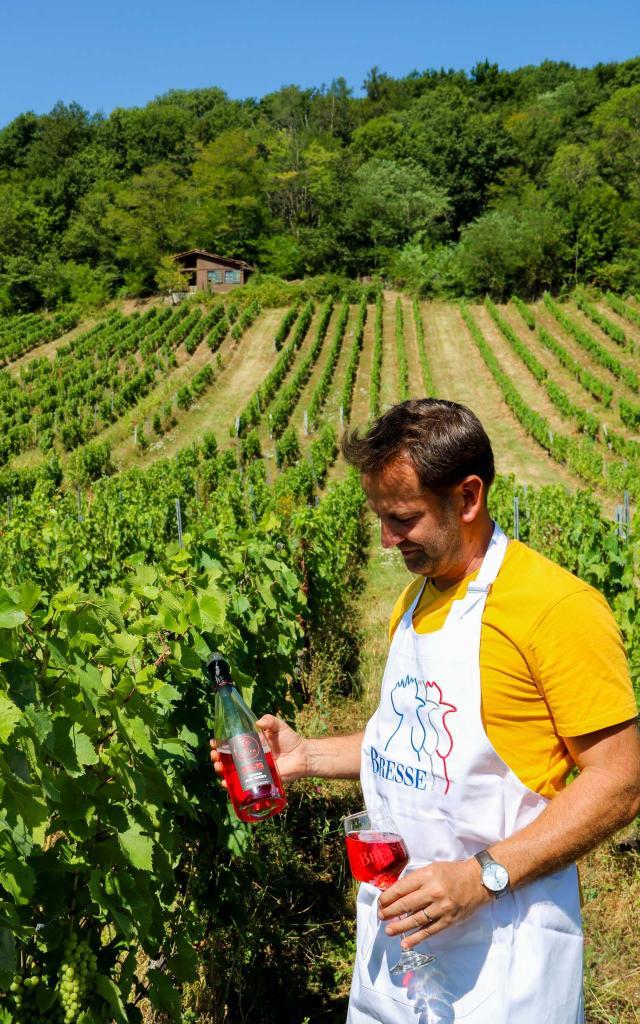 Bouteille de Cerdon dans les vignes