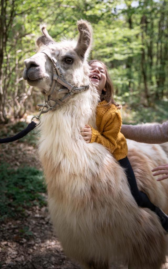 Lama et enfant