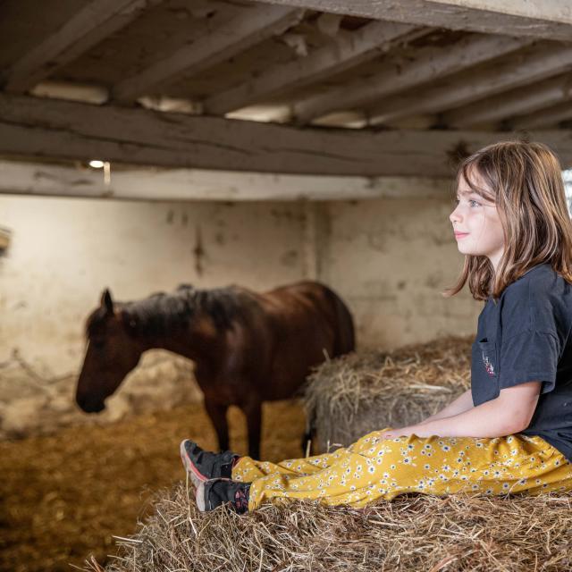 Box d'un cheval et deux enfants