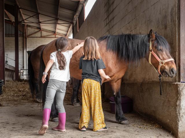 Un cheval et deux enfants