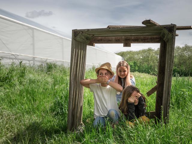 Enfants dans un champ