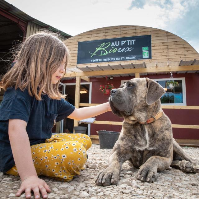 Enfant avec un chien