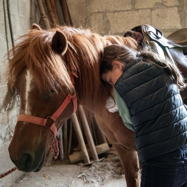 Un poney et une enfant