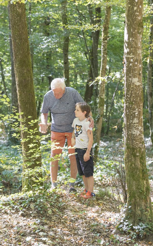 forêt de Seillon