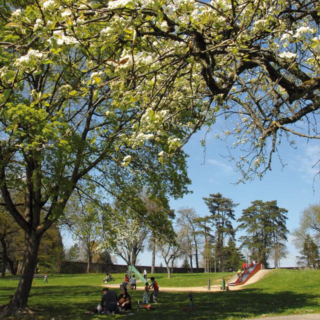 Parc Jean Monnet Printemps Crédit Serge Buathier