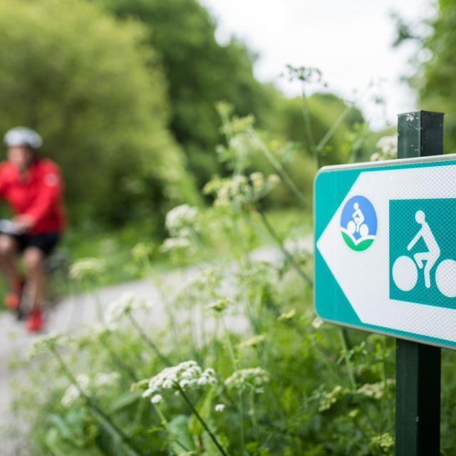 Vélo sur la voie verte