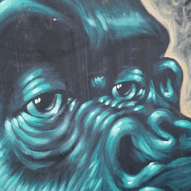 Détail d'une fresque de Lélé