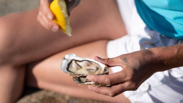 Dégustation d'huître, Cancale