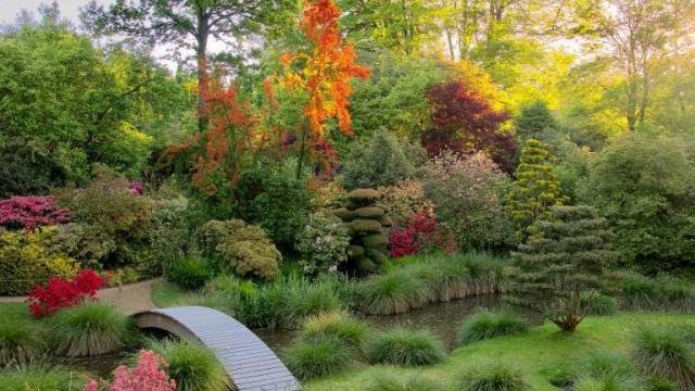 Parc Botanique de Haute Bretagne, Fougères