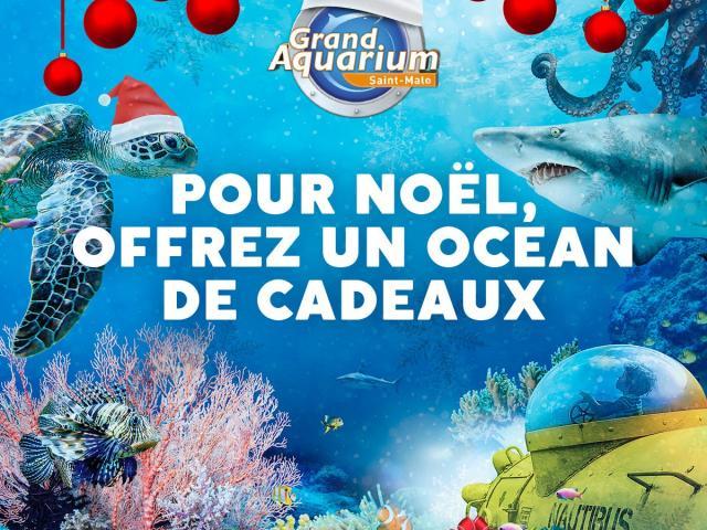 Offre Noël au Grand aquarium de Saint-Malo