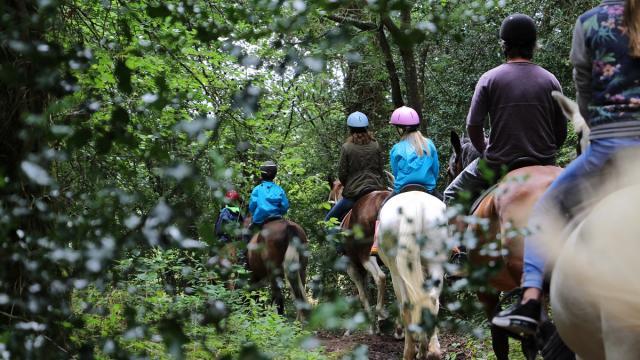 Balade à cheval autour du lac de Trémelin