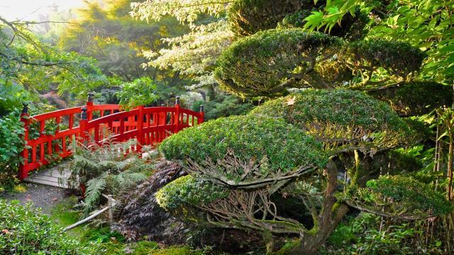 Pont rouge aux jardins du soleil levant, Parc botanique de Haute Bretagne