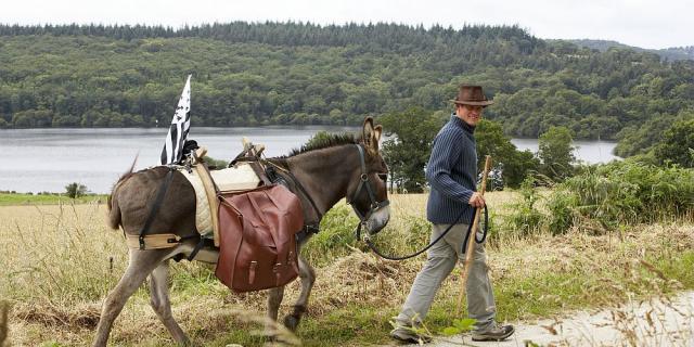 Randonnée en bonne compagnie, avec un âne flanqué de sacoches, au bord du Canal de Nantes à Brest