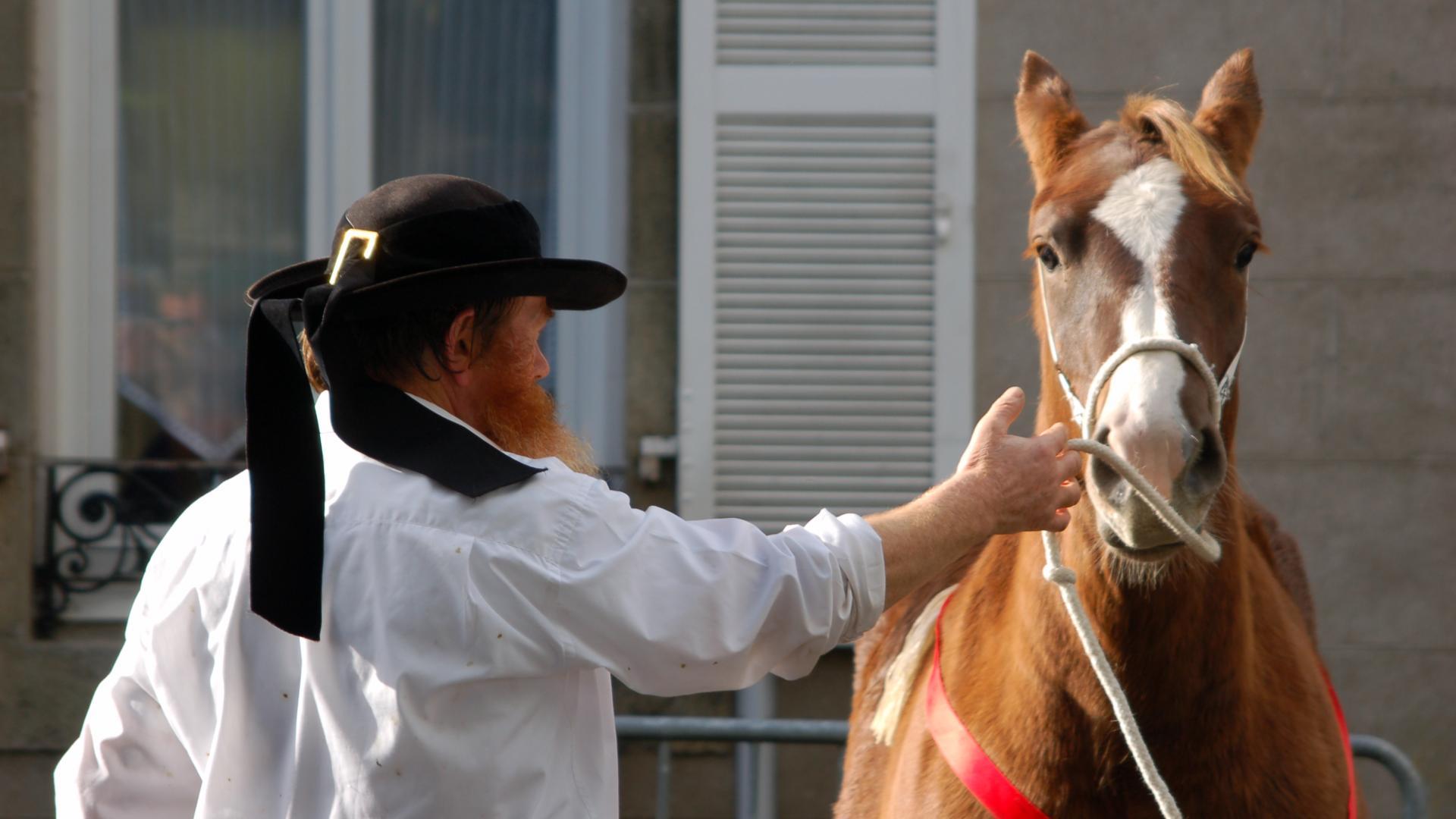 La Foire aux chevaux en automne à Carhaix
