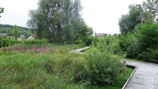 Longroy Jardin 19