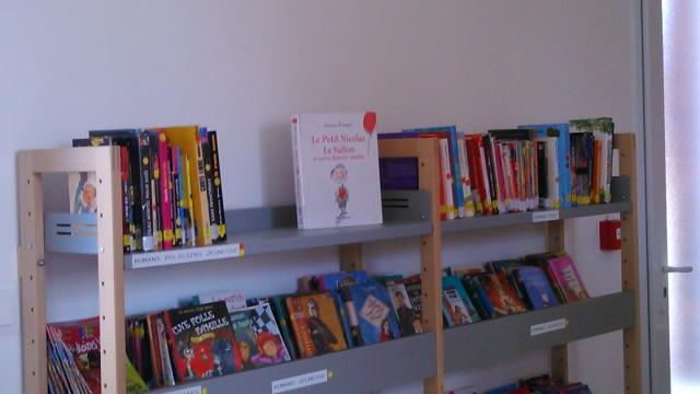 Etalondes Bibliotheque (4)