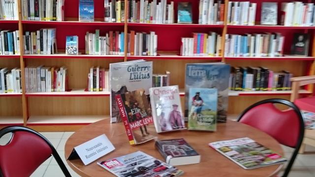 Etalondes Bibliotheque (5)