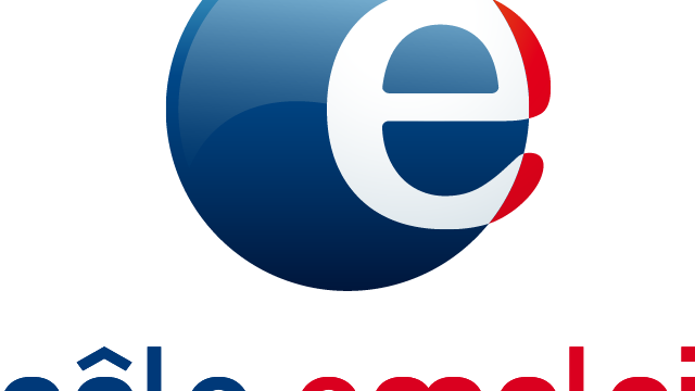 Logo Pole Emploi 1