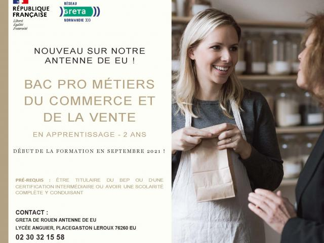Bac Pro Metiers Du Commerce Et De La Vente (v1)