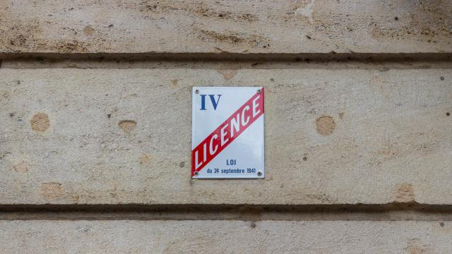 Licence IV disponible