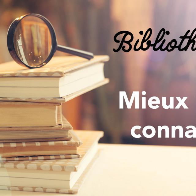 Questionnaire Bibliotheques Des Villes Soeurs