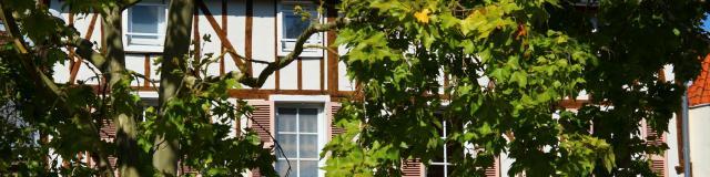 Architecture Pan De Bois Place Des Buttes Chalons © Mathilde Boivin