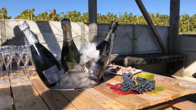 Degustation Loge De Vigne Champagne Lamiable © Office De Tourisme