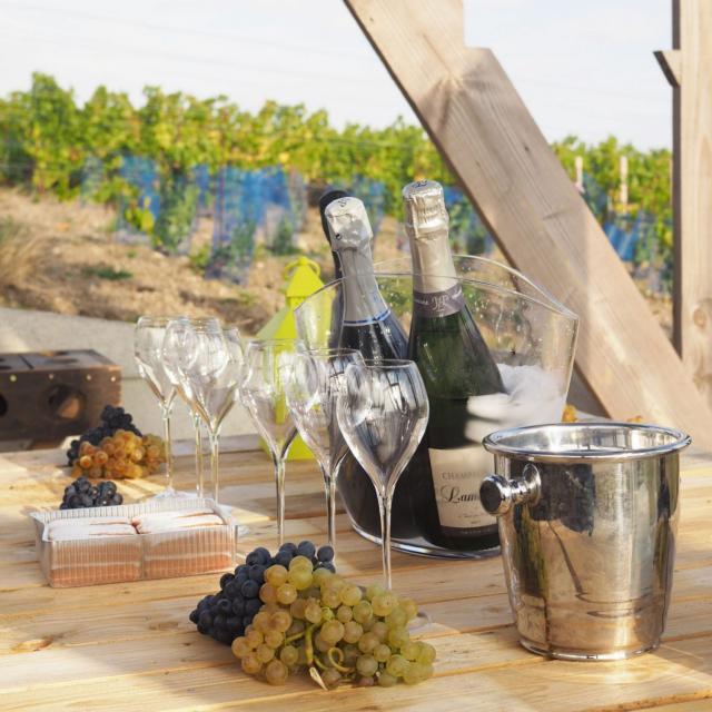 Degustation Loge De Vignes Champagne