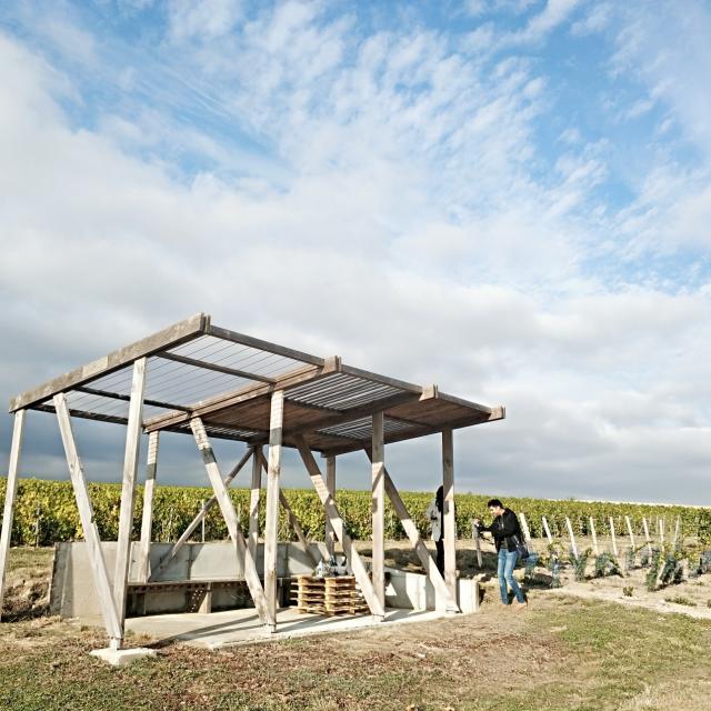 Degustation Loges De Vigne Champagne Tours Sur Marne © Mathilde Boivin