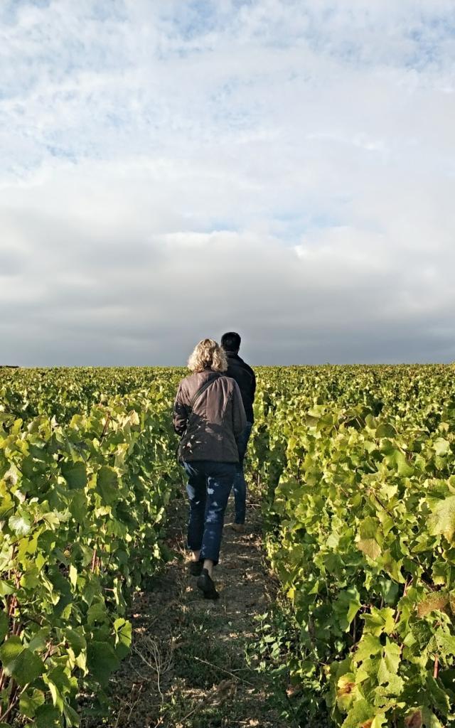 Degustation Loges De Vigne Vignoble Champagne © Mathilde Boivin