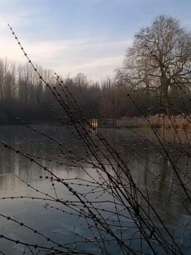 Domaine De Coolus Etang