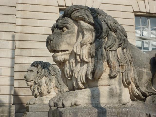 Hotel De Ville Chalons Parvis Lions