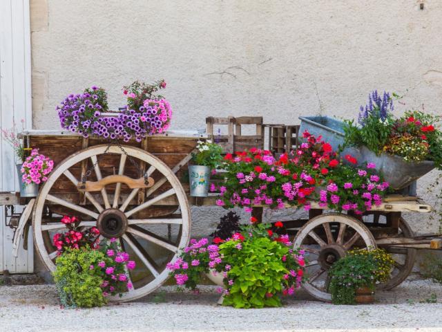 Baconnes Ville Jardin Decoration Fleurs