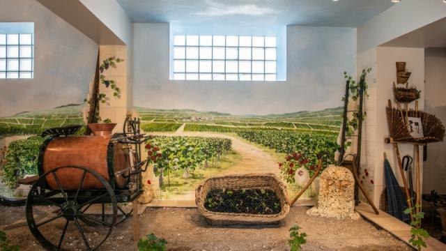 Champagne Famille Carbot Musee Fresque Vigne