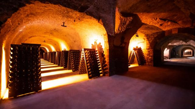 Champagne Joseph Perrier Caves Visite