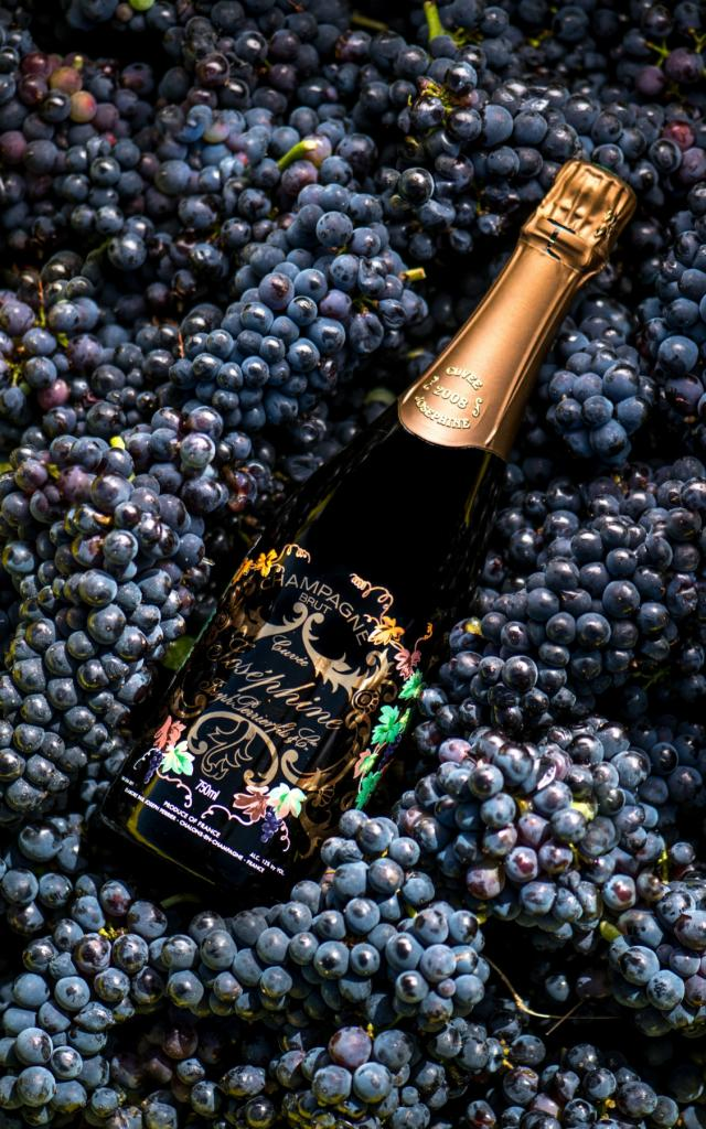 Champagne Joseph Perrier Cuvee Josephine
