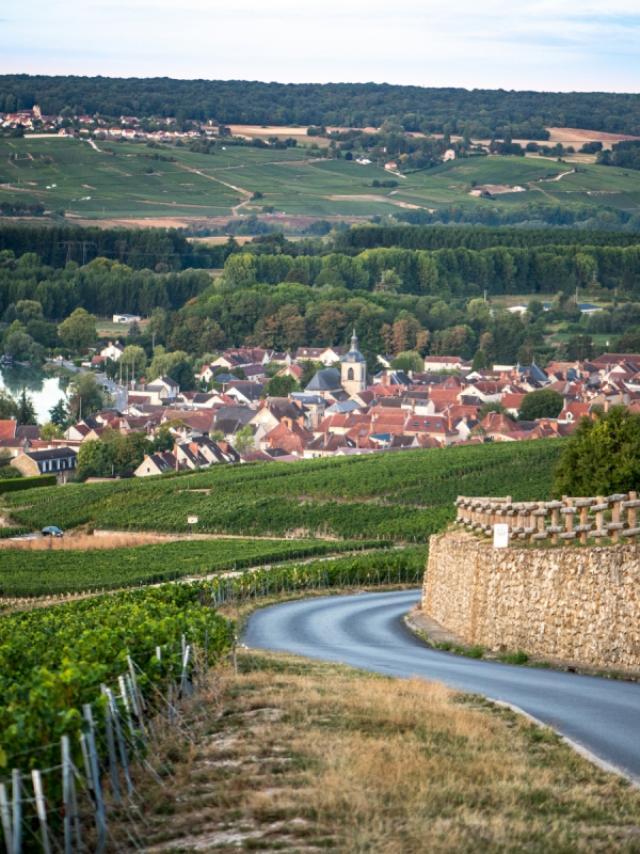 Champagne Joseph Perrier Vignes Terroir