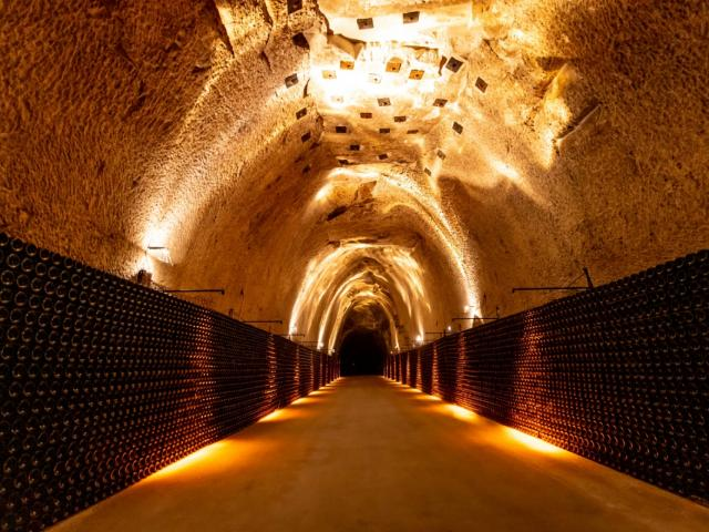 Champagne Joseph Perrier Visite Caves